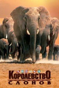 Африка – королевство слонов / Africa's Elephant Kingdom (1998)