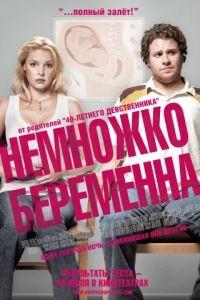 Немножко беременна / Knocked Up (2007)