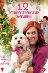 12 Рождественских желаний / 12 Wishes of Christmas (2011)