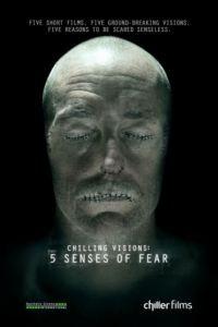 5 чувств страха / Chilling Visions: 5 Senses of Fear (2013)