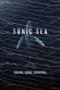 Оглушающий океан / Sonic Sea (2016)