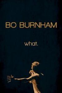 Бо Бёрнем: Что. / Bo Burnham: what. (2013)