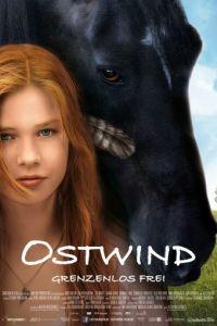 Восточный ветер / Ostwind (2013)