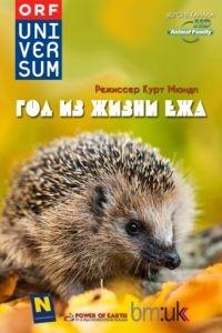 Год из жизни ежа / The Year of the Hedgehog (2009)