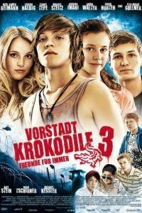 Деревенские крокодилы 3 / Vorstadtkrokodile 3 (2011)