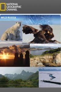 Дикая природа России / Wildes Russland (2008)