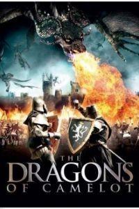 Драконы Камелота / Dragons of Camelot (2014)