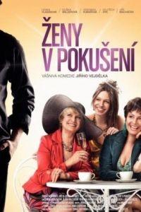 Женщины в соблазне / Zeny v pokuseni (2010)
