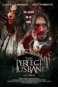 Идеальный муж / The Perfect Husband (2014)