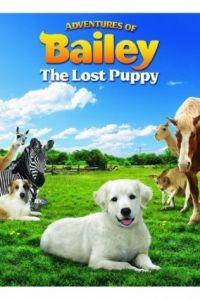 Приключения Бэйли: Потерянный щенок / Adventures of Bailey: The Lost Puppy (2010)