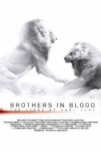 Прирожденные короли / Brothers in Blood: The Lions of Sabi Sand (2015)