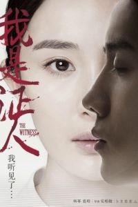 Свидетель / Wo shi zheng ren (2015)