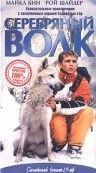 Серебряный волк / Silver Wolf (1999)