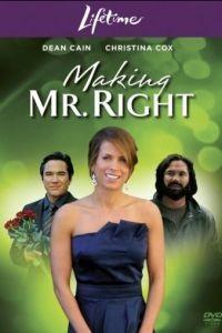 Создать мистера Совершенство / Making Mr. Right (2008)