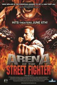 Уличный боец / Arena of the Street Fighter (2013)