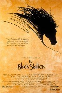 Черный скакун / The Black Stallion (1979)