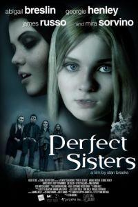 Школьный проект / Perfect Sisters (2013)