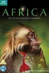 BBC. Африка 1 сезон 6 серия