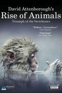 BBC. Восстание животных: Триумф позвоночных 1 сезон 2 серия