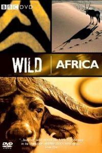 BBC: Дикая Африка 1 сезон 6 серия