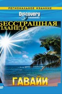 Discovery: Бесстрашная планета 1 сезон 6 серия