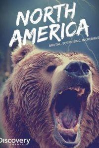 Discovery: Северная Америка 1 сезон 7 серия