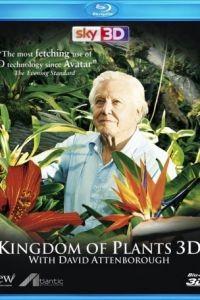 В королевстве растений с Дэвидом Аттенборо 1 сезон 3 серия