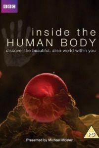 Внутри человеческого тела 1 сезон 4 серия