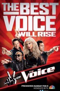 Голос Америки 8 сезон 25 серия