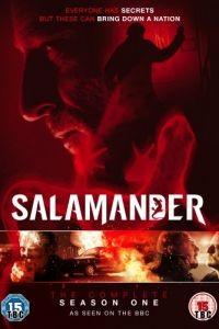 Саламандра 1 сезон 12 серия