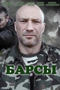 Барсы 1 сезон 4 серия