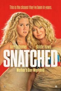 Дочь и мать её / Snatched (2017)