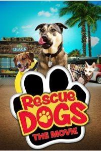 Собаки спешат на помощь / Rescue Dogs