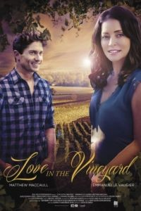 Любовь в винограднике / Love in the Vineyard (2016)