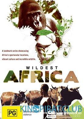 В дебрях Африки 1 сезон 13 серия