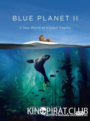BBC: Голубая планета 2 1 сезон 7 серия
