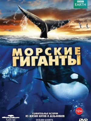 BBC: Морские гиганты 1 сезон 3 серия