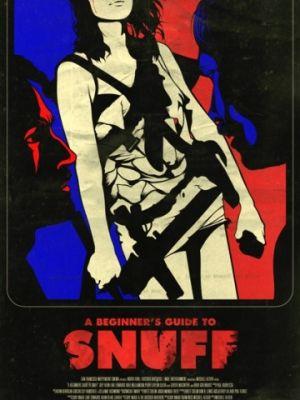Руководство по снафф-видео для начинающих / A Beginner's Guide to Snuff (2016)
