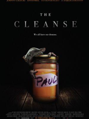 Мастер очистки / The Master Cleanse (2016)