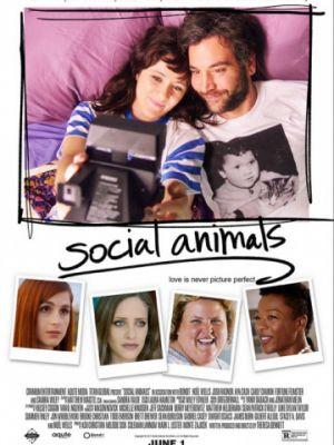 Погоня за любовью / Social Animals (2018)