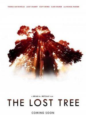 Потерянное дерево / The Lost Tree (2016)