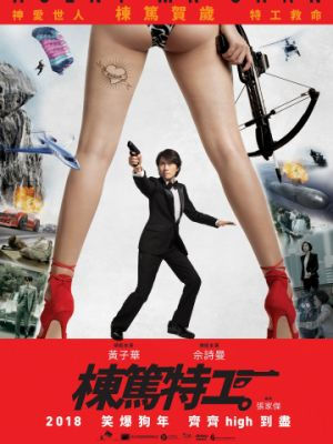 Спецагент мистер Чан / Dung duk dut gung (2018)