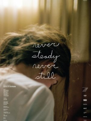 Жизнь в движении / Never Steady, Never Still (2017)