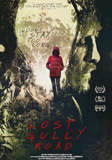 Дорога на гиблый байрак / Lost Gully Road (2017)