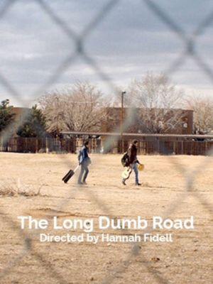Cмотреть Долгая идиотская дорога / The Long Dumb Road (2018) онлайн в Хдрезка качестве 720p