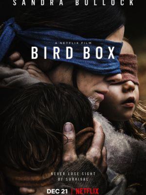 Птичий короб / Bird Box (2018)