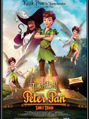 Питер Пэн: В поисках магической книги / Peter Pan: The Quest for the Never Book (2018)