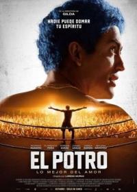 Эль Потро, рожденный любить / El Potro, lo mejor del amor (2018)