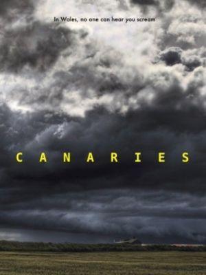 Канарейки / Canaries (2017)