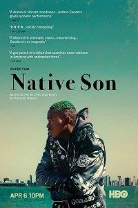 Родной сын / Native Son (2019)